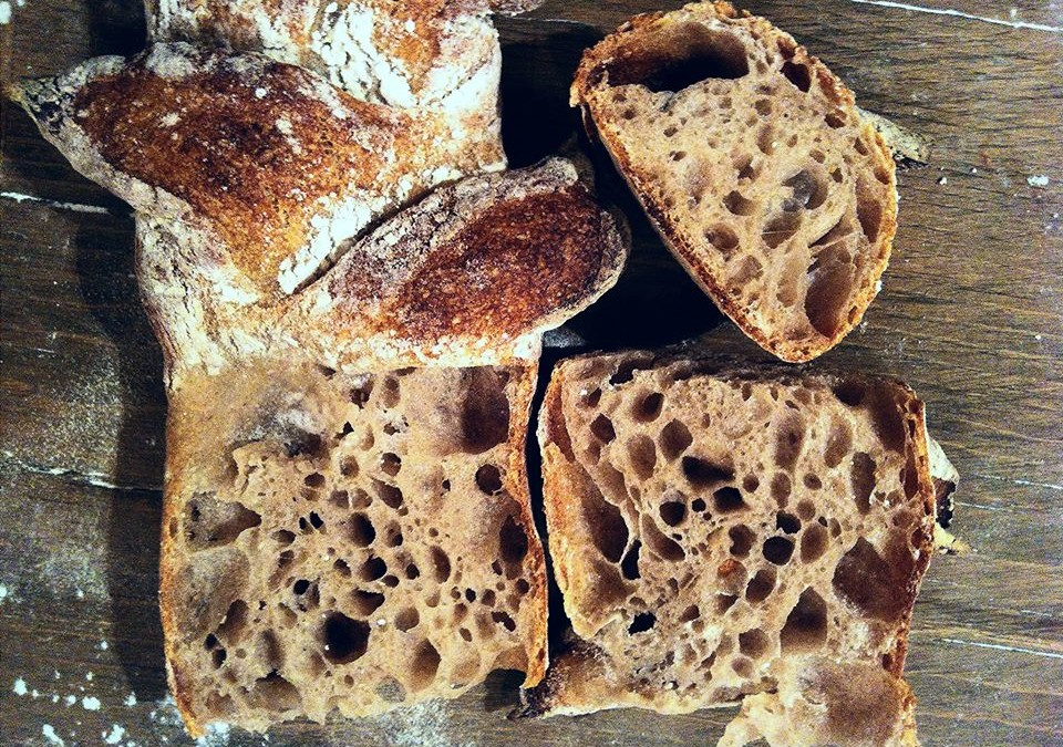 How to make starter for homemade Spelt sourdough